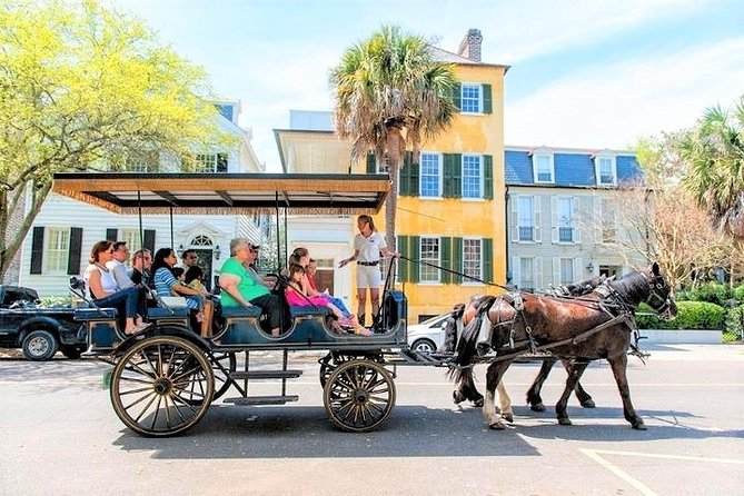 "Experience 25-30 blocks of Charleston's historic downtown district on this 1-Hour Daytime Palmetto Carriage Horse-Drawn Carriage Tour. See houses, gardens, mansions, churches & parks, learn about buildings, history, architecture, flora & the people that make up the ""Holy City."" <br><br>Palmetto Carriage Works is the oldest carriage tour company in Charleston and has developed the greatest carriage experience in the city! A Palmetto Carriage tour offers a blend of knowledge, wit, humor, and history and is exciting and ever-changing; a seamless fusion of 19th-century conveyance in a 21st-century city."