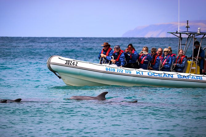 75 MIN Ocean Safari - Travel stunning ancient coastline, viewing dolphins, seals, eagles and birdlife along the way.  The guide provides informative local history. Fun for the whole family. This Safari departs daily from Christmas Cove Marina, Penneshaw and is a must do experience on the island.