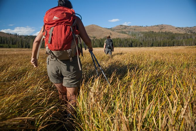 Our guides team is made up of Master Naturalists, experts with Master's Degrees in Outdoor and Sustainability Education, lifelong Montanans, and more!<br><br>We cater to everyone from first-time hikers to experienced backpackers and will make your day in Yellowstone memorable no matter how far we go!