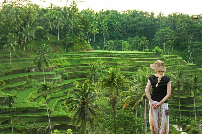 Full Day Tours explore Ubud to visit amazing tourist destinations in Bali which are tourist sites in Ubud Village. The amazing tourist destination in Bali which is a tourist location on this tour is Ubud Monkey Forest is a nature reserve temple complex in Ubud inhabited by several groups of monkeys and tropical animals. Next we will visit the coffee making process and the jungle swing in the same place. Then the tour continues to visit Tegalalang Rice Terrace, a view of rice fields north of Ubud village. then the tour continues to the temple water (pura tirta empul) is a temple complex consisting of petirtaan or bathing structures, famous for its sacred spring, where Balinese Hindus go to for ritual purification. The tour continued to visit Tegenungan Waterfall.