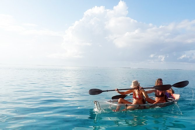 Explore Moorea Lagoon on a guided tour by a double transparent kayak, a fun and unique experience and great to do as a couple, with your family or between friends.<br><br>Imagine being able to explore the seabed of Moorea's lagoon from your kayak. Get insider tips from your guide and explore areas you may not find on your own if you simply rented a kayak, your guide will help you discover the abundant flora and fauna of Moorea lagoon, see corals, tropical fish, sharks, stingray, and if you're lucky dolphins and turtles too!<br><br>You can choose to join a 2-hours afternoon tour, or a 3-hours half-day tour as part of small-group with a maximum of 10 participants, or take a private tour for a more personalised experience.