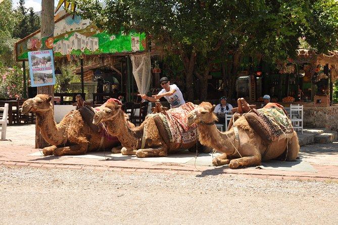 Up & Down Safari, Fethiye, Turkey