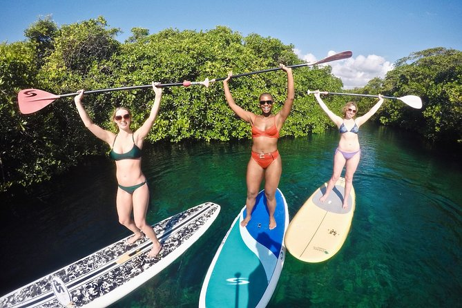 MAIS FOTOS, Cenote Paddleboarding and Snorkeling in Tulum