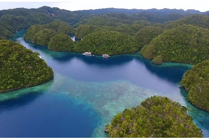 A Siargao Island Hopping tour is a must-do activity when visiting Siargao Island in the Philippines. Spend the day island hopping in Sugba Lagoon, Magpupungko Tidal Pool, Maasim Coconut Forest and Maasim River.