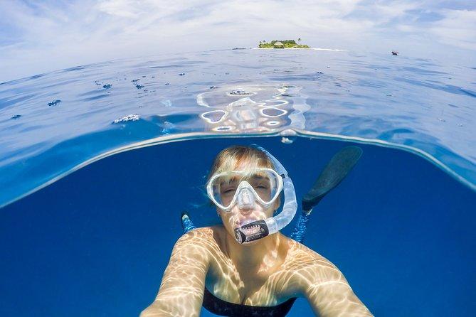 Key West with Dolphin Encounter or other options, Miami, FL, ESTADOS UNIDOS