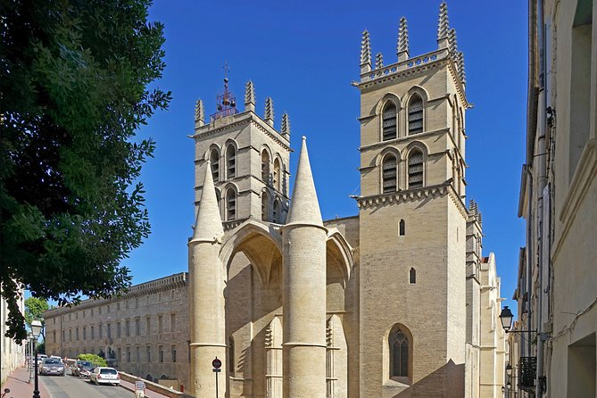 MÁS FOTOS, Private 2-hour Walking Tour of the Historical Center of Montpellier