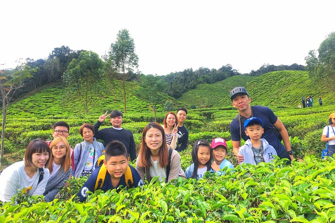 Experience the Real Cameron Highland from Penang, ,