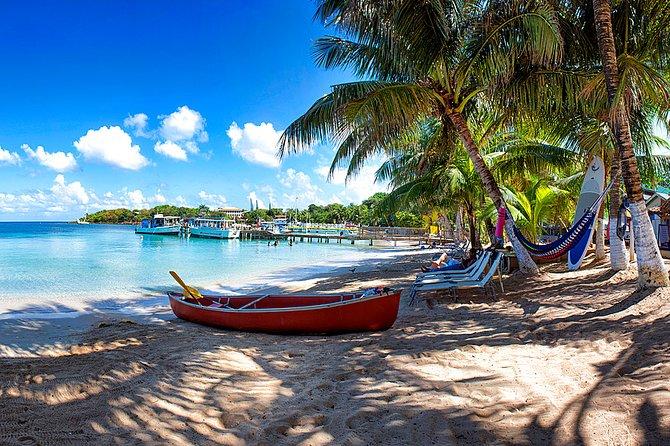 Shore Excursion: Private Half-Day Sightseen Tour and Beach, Roatan, HONDURAS