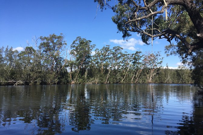 Explore the peaceful village of Fishermans Paradise on a 90 minute guided walk with locals. Hear stories of natural environment, history and the bushfires of 2019-2020. See a diverse range of wildlife and regenerating bush, and enjoy stunning river views.