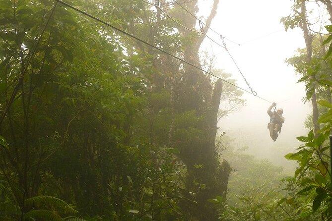 Zipline and Hanging Bridges Combo Tour in Monteverde Cloud Forest, Playa Flamingo, COSTA RICA