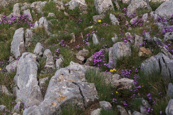 Doubitsia The ultimate summer hike, Kalamata, GRECIA