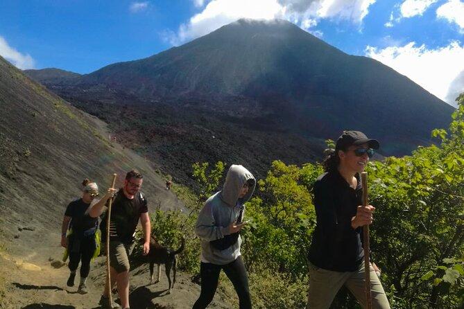 Puerto Quetzal Shore Excursion - Private Tour: Pacaya Hike Experience, Puerto Quetzal, GUATEMALA