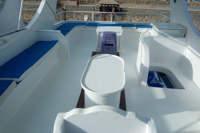 enjoy the beauty of the Red Sea and watching dolphins. snorkeling and swimming. Private boat. Fishing. 8 hours on the boat