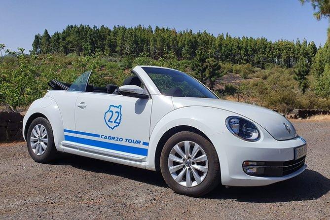 Excursión en Descapotable Beetle en Gran Canaria, Gran Canaria, ESPAÑA