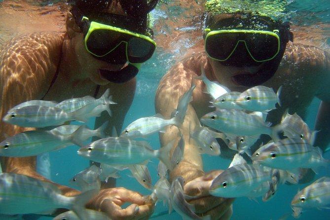 MÁS FOTOS, Tour To Maracajaú With Catamaran Ride