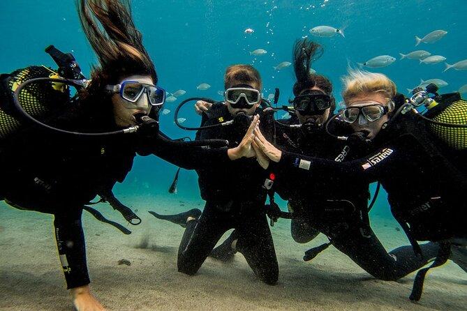 MÁS FOTOS, Discover Scuba Diving