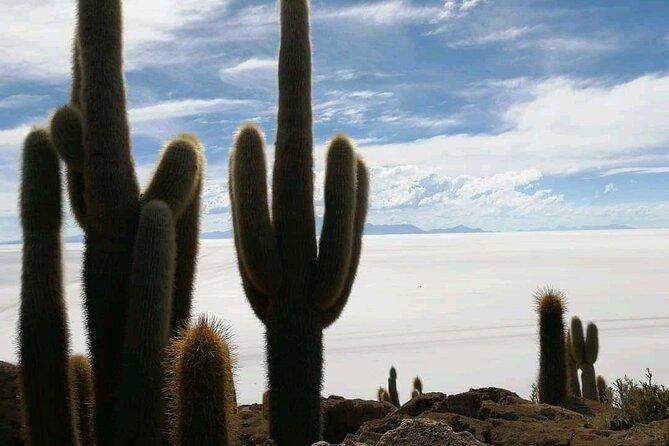 3-Day 2-Night Salar de Uyuni by Air from La Paz., La Paz, BOLIVIA