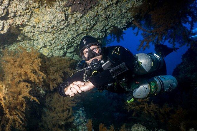 Varias inmersiones de submarinismo en la Playa de las Américas, Tenerife, ESPAÑA