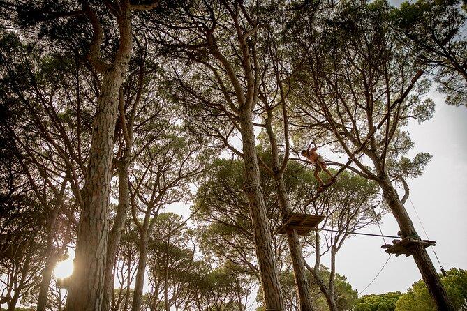 Costa Brava Parc Aventura - Medium Pack (5 circuits), Girona, Spain