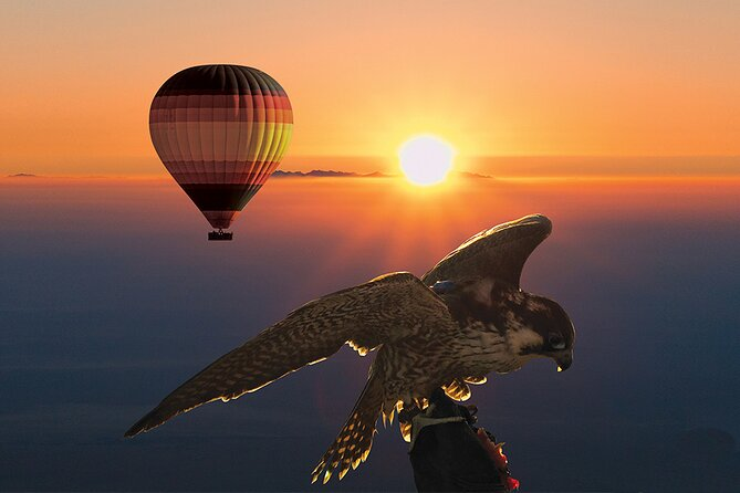 MORE PHOTOS, Amazing Hot Air Balloon With Beautiful Desert Sunrise View