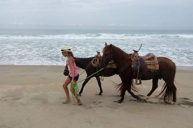 Beach Horseback Riding Excursion (3 hours) in Mazunte, La Ventanilla, ,