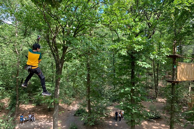Accrobranches course in the middle of the forest in Saint-Germain-en-Laye, Versalles, FRANCIA