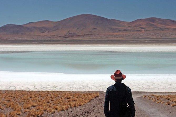 Argentine, Chilean and Bolivian High Plateau Salt flats & lakes, Cafayate, ARGENTINA