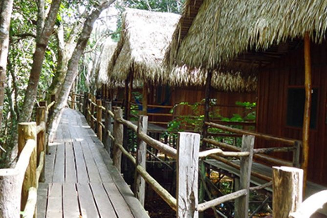 4-Days Unique Experience at Amazon Lodge, immersion on a Jungle Adventure, Manaus, BRASIL