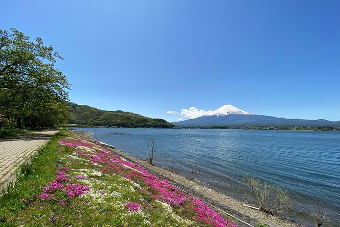 Discover the spectacular beauty of Mt Fuji, Lake Kawaguchi and the Fuji Five Lakes region with the help of our team of guides who bring you by private car to a curated selection of the area's most sublime locations. See magnificent seasonal attractions like corridors of cherry trees in bloom, hillsides blanketed by snowy evergreens, tunnels of maple branches dressed in fiery colors and fields of flowers that foreground Fuji's silhouette.<br><br>You'll visit a wide variety of extraordinary sites that show off Mount Fuji or juxtapose the region's impressive cultural and architectural features with natural environments of incredible beauty. Stops on the journey include Mt Fuji's 5th Station, Chureito Pagoda and picturesque Lake Kawaguchi, where the iconic mountain can often be seen towering over its reflection on the surface of the water.<br><br>Whether you're a a casual sightseer or a serious photographer, this tour offers you an excellent way to experience the best attractions in the region.