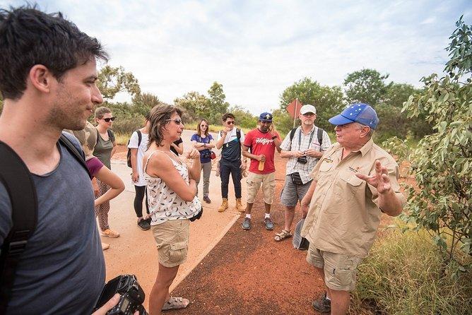 Uluru, Kata Tjuta and Kings Canyon Camping Safari from Ayers Rock, Ayers Rock, AUSTRALIA
