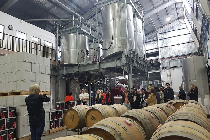 Hunter Valley Small Group Wine, Gin, Cheese & Chocolate Tour, ,