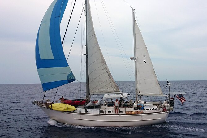 """Sailing is the best way to see and experience Vineyard Haven Harbor, Nantucket Sound and Vineyard Sound. Tandemeer is a big beautiful 1980 classic 60' ketch made famous in the 1982 hit movie """"Trading Places"""" with Eddie Murphy, Dan Akroyd and Jamie Lee Curtis. Fun in the Sun in Style."""
