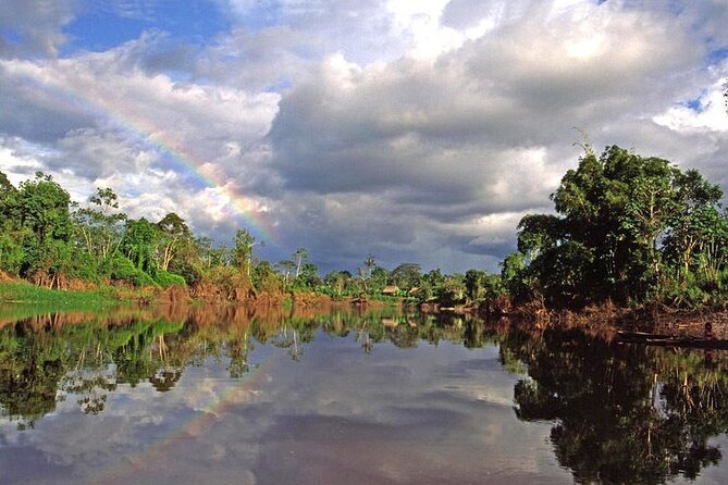 This is the perfect tour for those who want to go on a search for the Amazon's pink dolphin, pirahnas, boas as well as desiring to see large mammals like pumas, jaguars, tapirs and primates not to mention monkeys, many birds and insects found at the Pacaya Samiria National Reserve where over one third of all the species of the Amazon have made their natural habitat.<br><br>This tour is perfect for those who are adventurous and want to experience the one of the most pristine protected areas Peru has to offer. You will sleep at a hotel the first night, but then as you venture deep into the jungle, our comfortable camping gear will give you a full immersion in the sights and sounds of the Amazon as you will wake up to a chorus of birds, take nocturnal canoe trips and search for wildlife in this amazing reserve.<br><br>All you have to do is book your flight to Tarapoto which is where the tour starts. We will of course help you get the lowest rate with our agency discount.<br><br>