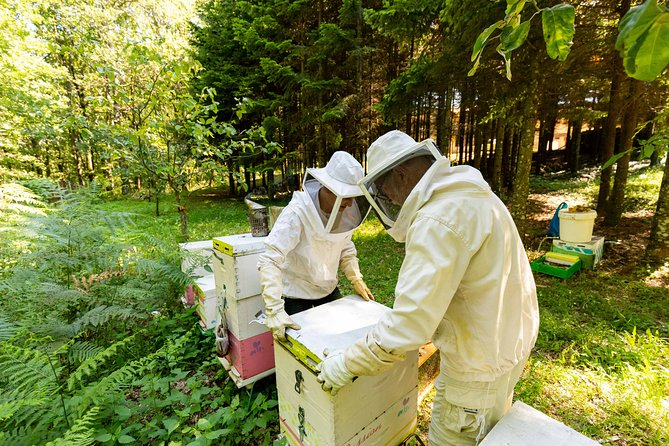 You can be and do what a real beekeeper does, plus the information you get by the presentation through PowerPoint, have fun and experience yourself with the interactive game. The trip to our beehive is unique between the forest with the endless green and the wonderful view, almost to all sides of Halkidiki. <br>The farm that takes place our presentation, hosts us in their property, buildings, and outdoors. Our first meeting and presentation is in the cafeteria, then, we have a big table with our honey products where you can taste it and buy if you want. We have at the same table, an observation beehive window where everyone can see the bees as long as he wants. Also, while testing, we give a small present (badge with bees). Then, in the courtyard we play all together the interactive game. After that, we have a workshop where we introduce the tools and the way they are used. <br>The visitor gets dressed in the beekeepers' suit and visits the beehives with the team of our beekeepers.