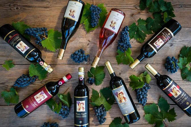 Tour and Tasting at an Organic Winery in the Heart of Chianti Classico Area, Chianti, ITALIA