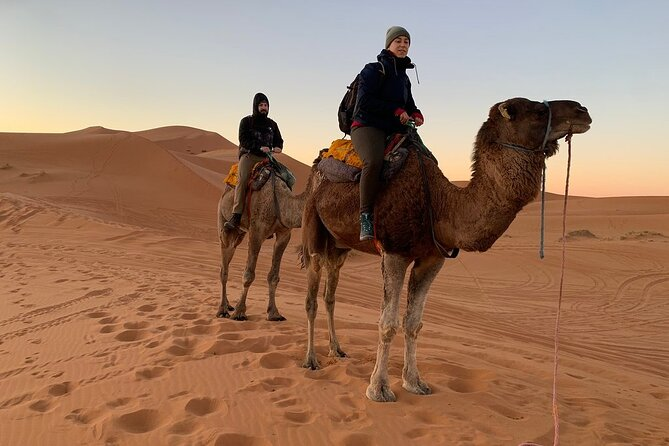 2-Days Desert Trip from Fes, Fez, MARRUECOS