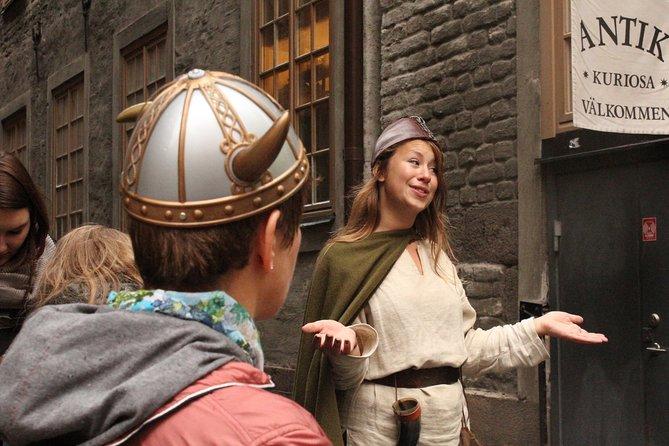 Excursión privada: excursión a pie sobre la historia vikinga de Estocolmo, Estocolmo, SUECIA
