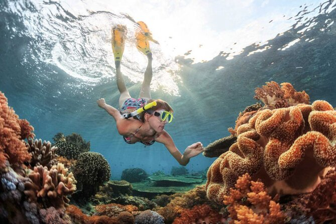 Snorkeling in Bali will be a great experience for you who enjoy holiday in Bali. Blue Lagoon is a great snorkeling spot forfamilies and beginner snorkelers since the waters are extremely calm when the weather at normal condition.<br><br>Blue Lagoon located at Padang Bai - Bali, which is one of the best snorkeling places in Bali, it is a very nice chance to see the marine life. This experience including all snorkeling equipment, lunch, and hotel return transfers.<br><br>This will be the best choice for you who looking for: Bali Snorkeling Trip, Snorkeling in Bali, Bali Snorkeling Experience, Bali Things To Do, Bali Activities, Snorkeling and Gate of Heaven Tour, Blue Lagoon Snorkeling and East Bali Tour.