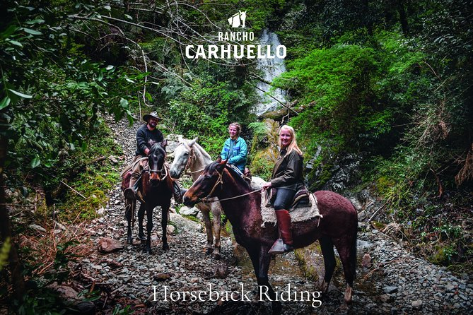 Riding in small personal groups with well-trained sure-footed horses and experienced multilingual guides who know a lot about horses, country and people. Varied landscape, gallop possibilities and challenging climbing in the virgin rainforest.