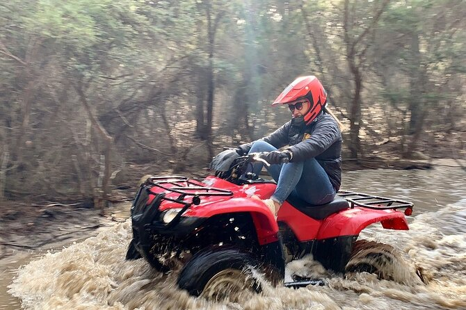 Half-Day Guided ATV Exploration Tour from Coles Bay, Coles Bay, AUSTRALIA