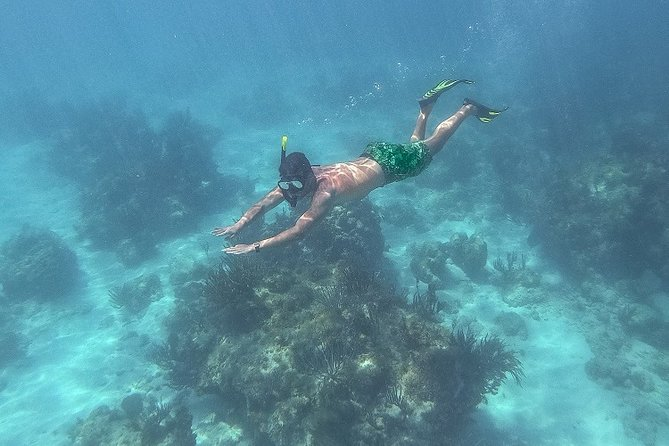 From Fajardo: Icacos Deserted Island Catamaran & Picnic Cruise, ,