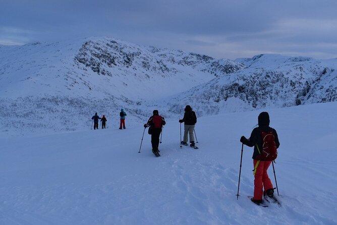 Guided Snowshoe Walk on Tromsoya Island in Tromso, Tromso, NORUEGA