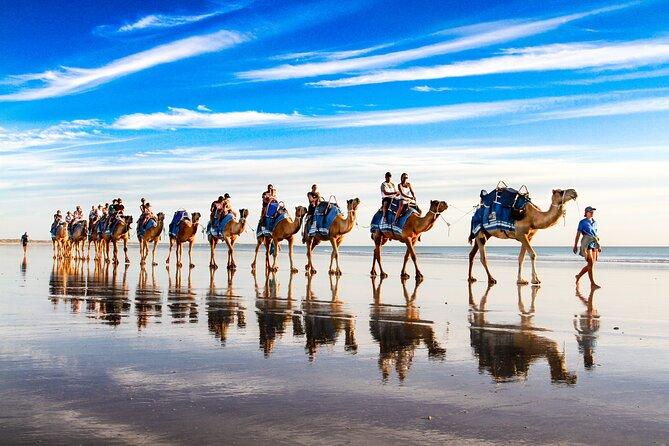 MAIS FOTOS, Passeio de camelo antes do pôr do sol em Broome 30 minutos