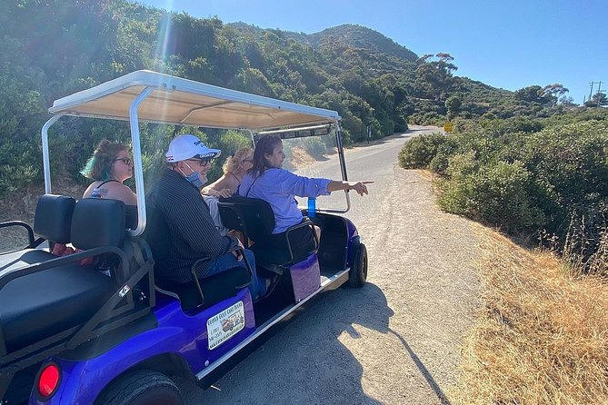 Catalina Island's original custom guided golf cart tour! Explore Avalon through the eyes of a local. With us you will learn about the history of the Island and the lifestyle of its residents. Custom tours of 2+ hours will entertain and educate you! Reserve your tour time in advance, limited times and space are offered each day.
