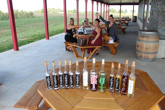Private-vehicle Jordan & Beamsville Wine Tour With Cheese & Charcuterie, Cataratas del Niagara, CANADA