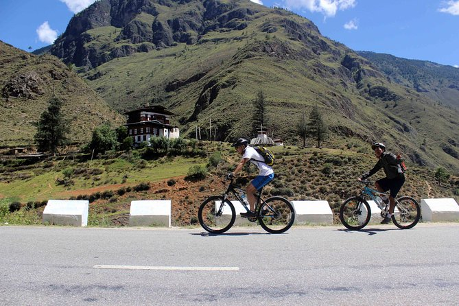 In this tour we have variance kind of cycling offer<br>If you want to cycle through the forest of pines the best one would be to take the trail from Buddha Dordenma to Changangkha Lhakhang, the activity level would be medium. From this trail you can get the good view of Thimphu valley.<br>If you want something adventurous then you can choose to cycle from Sangaygang to Wanditse and come out from Dechenphodrang. The cycling trail from Wangditse to Dechenphodrang is pretty rugged and tough. Even this trail will be taking you through the forest of pine and Juniper.<br>If you are lucky you may spot wild pheasant, macpie and some other variance of rare birds.<br>If you want to make easy and nice cycling trip then you can choose to ride to the north to Dodina village (30 km round trip) along the sluggish Wangchhu river.<br>As per your interest we can any of the above cycling tour.<br>
