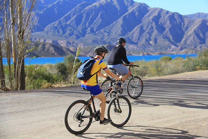 Mountain Bike Adventure from Mendoza, Mendoza, ARGENTINA
