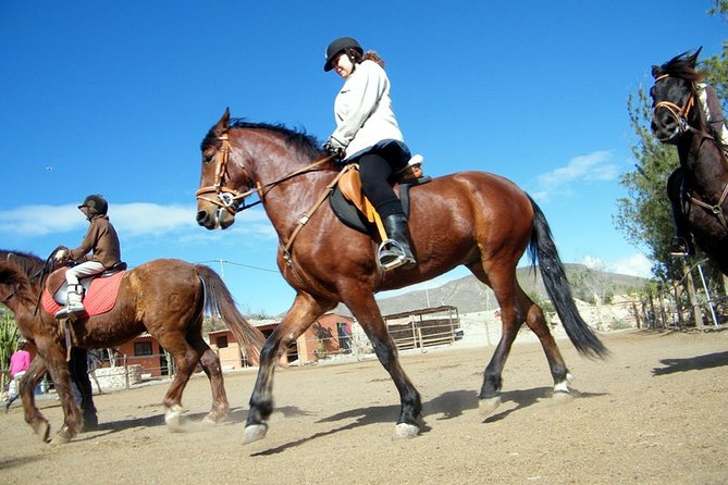 Horseback Riding with Barbacue in Fuerteventura, Spain, Fuerteventura, ESPAÑA