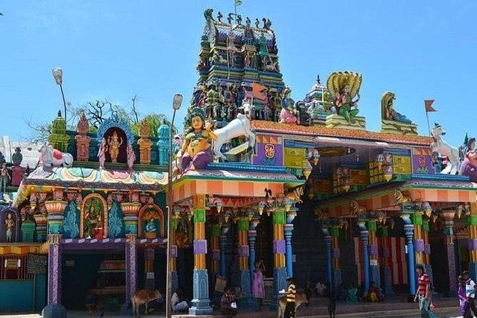 Jaffna private tour from Sigiriya : 3 Nights 4 Days Tour, Jaffna, Sri Lanka