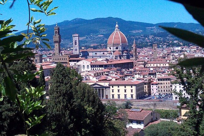 MÁS FOTOS, Livorno Shore Excursion: Florence and Pisa Private Day Trip
